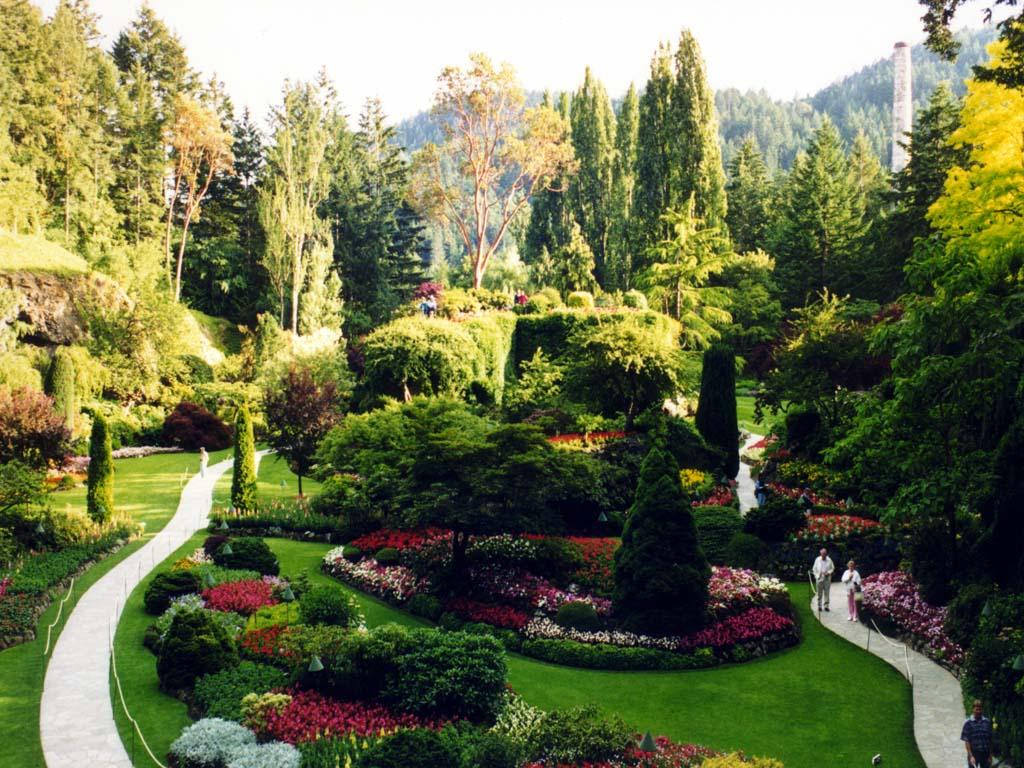 Au-jardin-fleuri-1